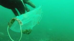 Maseczki i rękawiczki w wodach Morza Śródziemnego