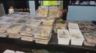 Konfiskata 138 pytonów